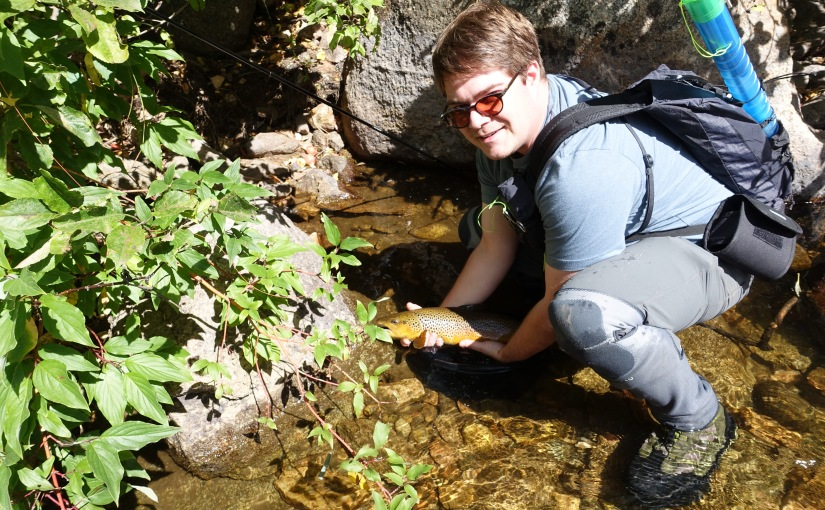 Wading Small Streams: Making A Case For Wet Wading