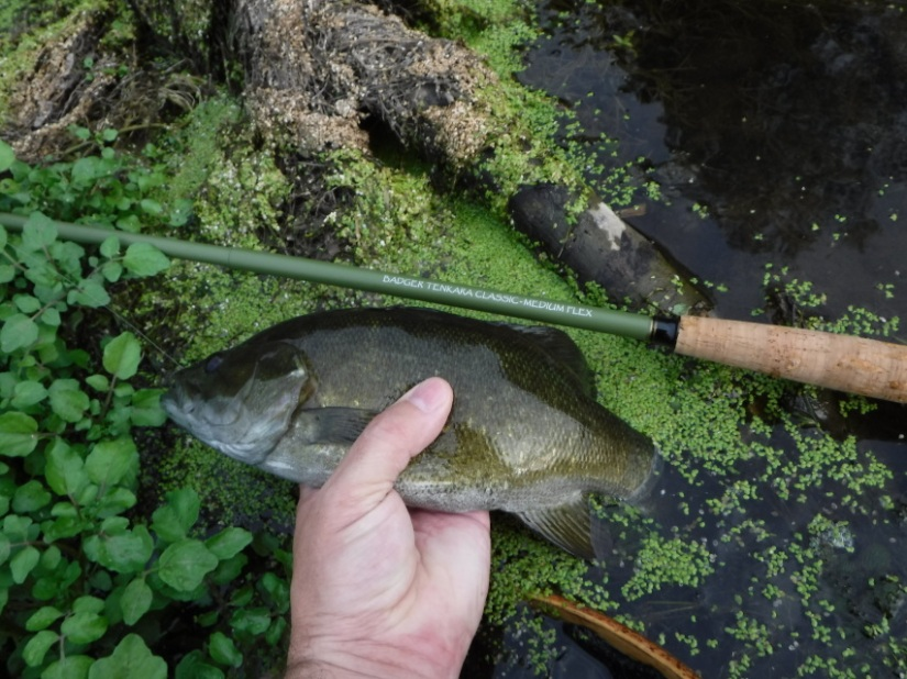 Adapting Tenkara for Smallmouth Bass