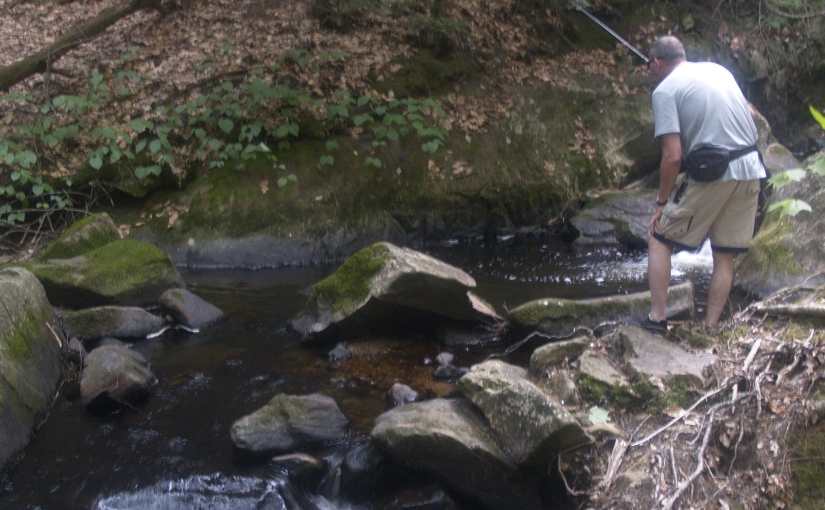 Northeast Brookies: Where the Streams Have No Names, Leave the 12-Footer atHome
