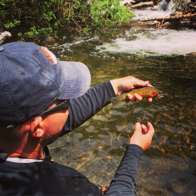 Josh Houchin with an beautiful little cutthroat. (Copy)