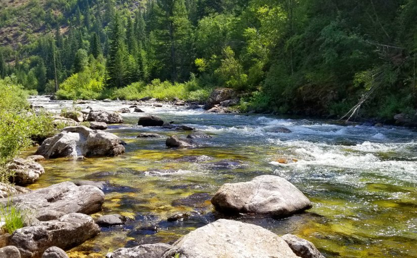 Idaho Gold: Prospecting the Overlooked & Underrated for Backcountry Cutthroat